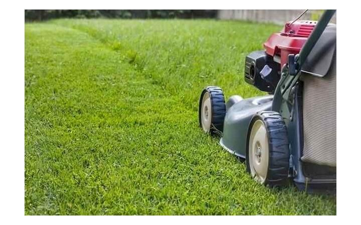 Aicinājums īpašniekiem sekot regulārai zāles pļaušanai