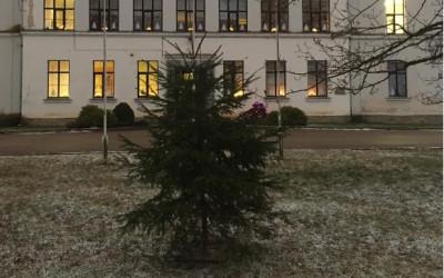 """Aknīstes vidusskolas skolēnu parlaments aicina piedalīties zibakcijā """"Radi Ziemassvētkus"""""""