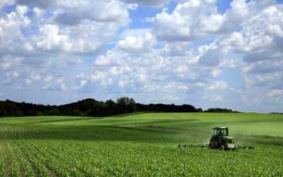 LLKC aicina pieteikties 7 dienu mācībām par bioloģiskās lauksaimniecības produkcijas ražošanu